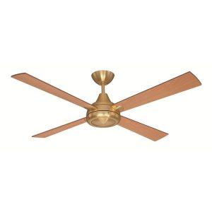 celing fan